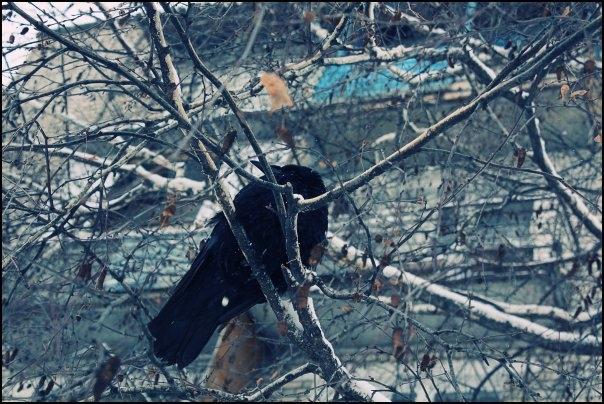 знакомства с волгоградской области